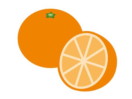 シンプルな果物 オレンジ(断面)