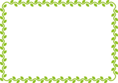 植物(常春藤)框架