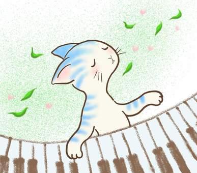 Piano cat 40