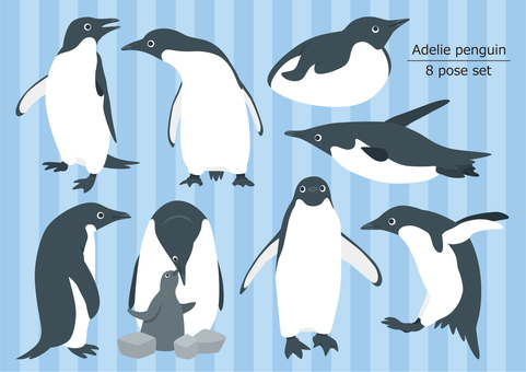 Adelie penguin 8 pose set