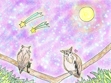 Owl and good friend cat