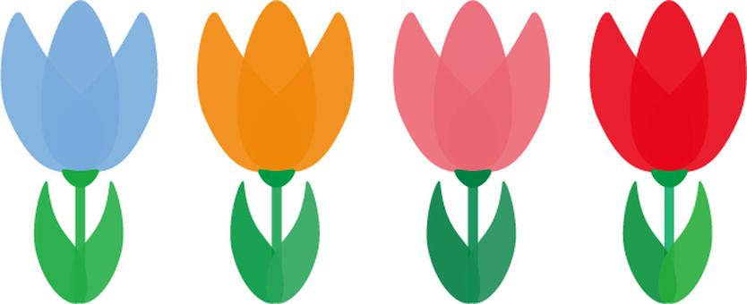 Cute colorful tulip