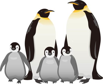 Emperor Penguin parent and child 2