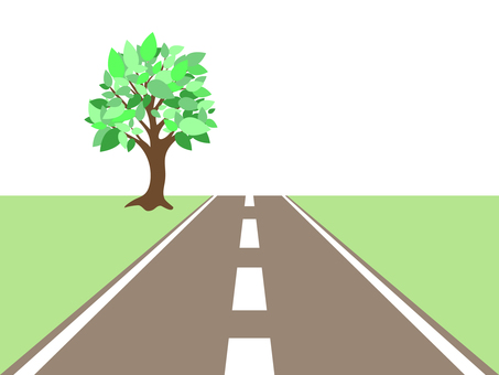 Fresh green tree on a straight road