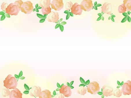 Rose frame Flower yellow orange
