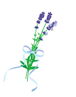 Lavender tied with ribbon