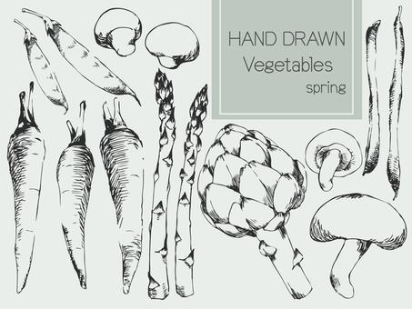 야채 스케치 1 봄 야채 1