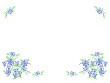 Blueberry rim decoration ★ 0401-W