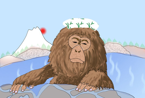 원숭이 온천 후지산과 일출