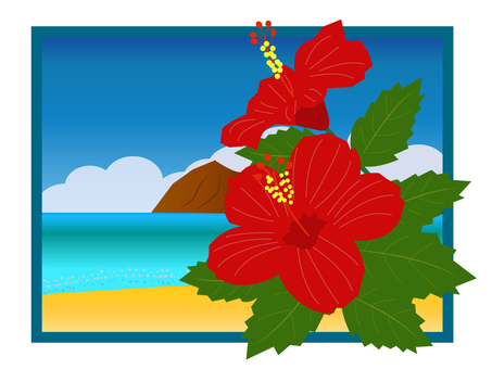 Hibiscus and the landscape of the sea
