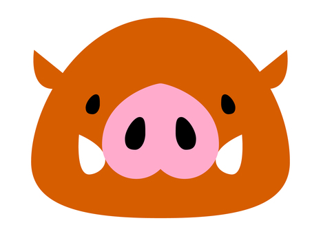 The face of a boar