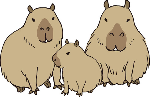 Capybara (parent and child)