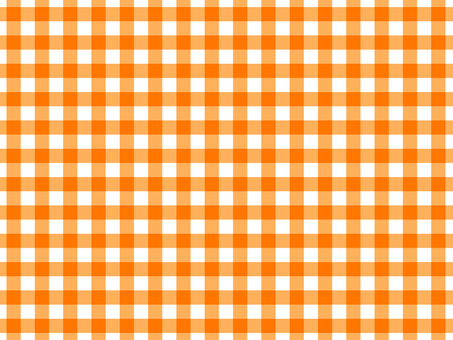 Gingham check 4