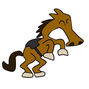 Horse 101