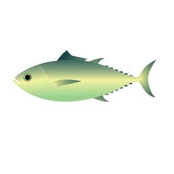Seafood - tuna