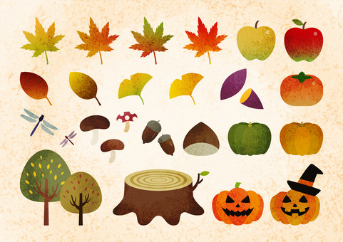 Autumn material 05