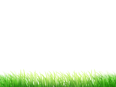 Lawn Background / Wallpaper Frame 1