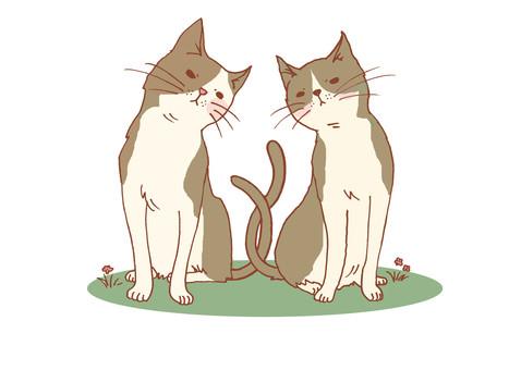 ライバル(白黒猫バージョン)