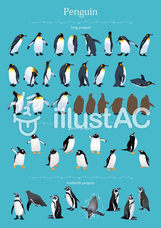 ペンギン一覧のイラスト