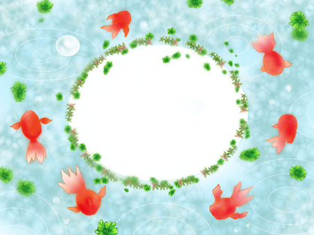 Water plants and goldfish