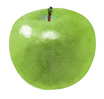水彩食材シリーズ 青リンゴ