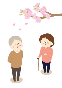 Senior looking up cherry blossoms