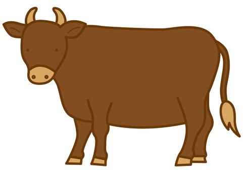 牛2-4C