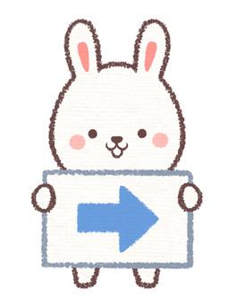 Information card right rabbit