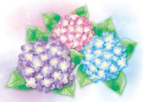 Watercolor-like hydrangea