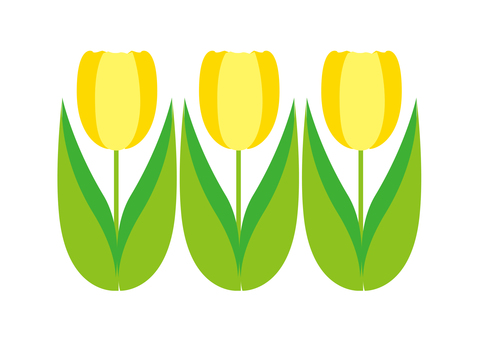 Three tulips - yellow