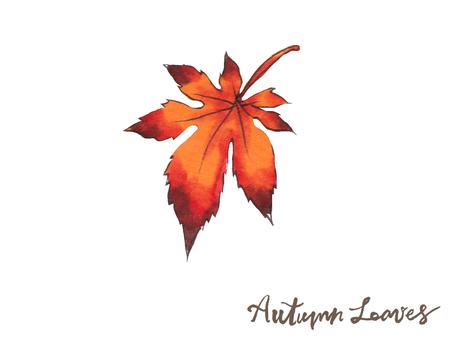가을 나뭇잎 08
