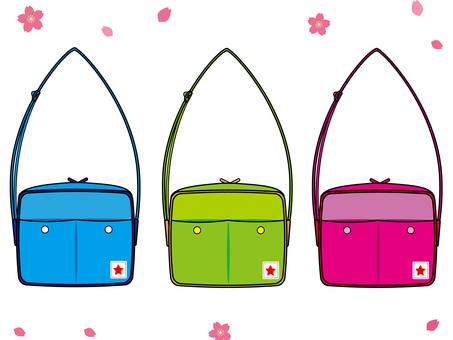 Passenger bag b