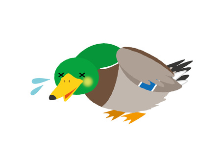 Duck not cheerful