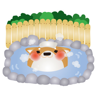 Shiba Inu hot spring