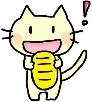 I am a small cat!