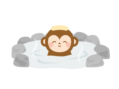 Curious spa