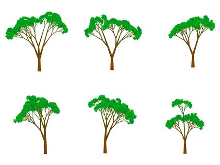 Tree illustration 68