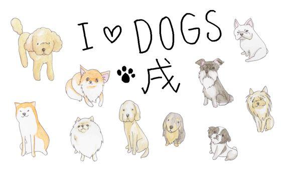犬(色んな犬種)