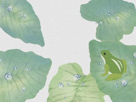 Frog and leaf 2