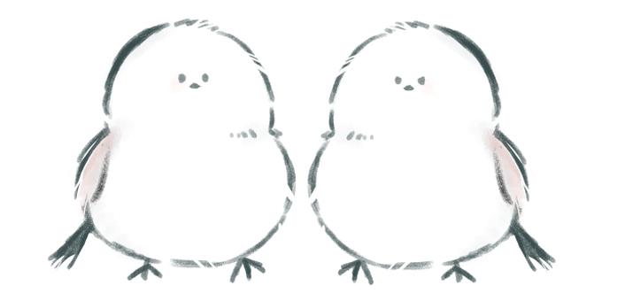 Shimaenaga brothers