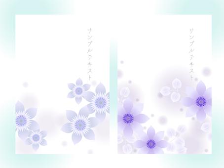 鐵線蓮06