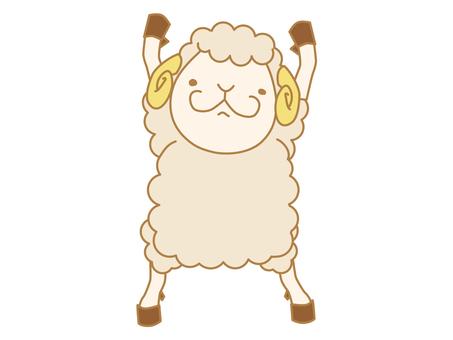 Shepherd is a yatter