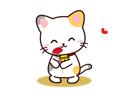 Mike cat (carnation)