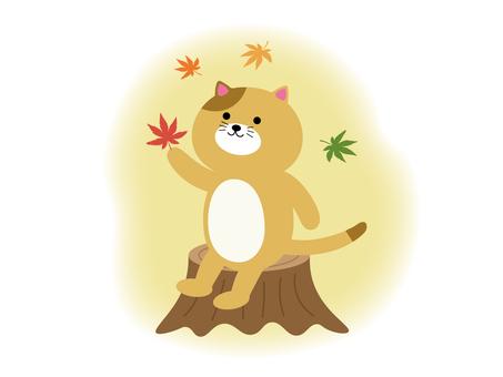 Cat's autumn illustration material