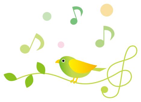 노래 작은 새