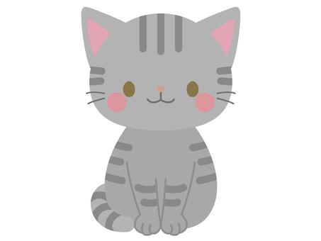 Sabbat cat
