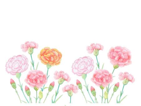 Carnation 03 ★ 0459-F
