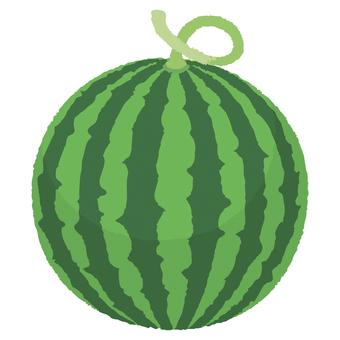 Watermelon 04