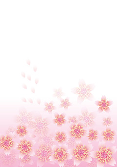 Blooming flowers 223