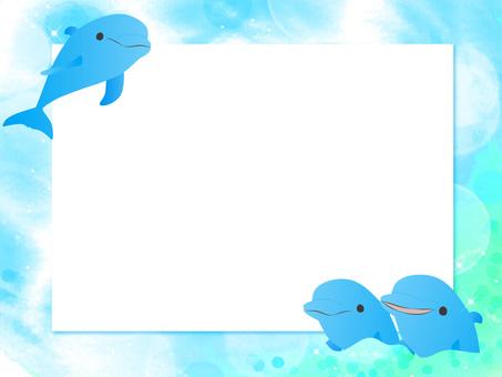 可愛的海豚2